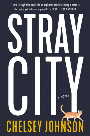 New Release Spotlight: Stray City by Chelsey Johnson